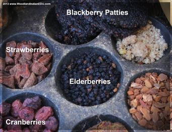 Native American Berry Foods Berries Fruits