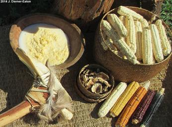 Native American cornbread foods