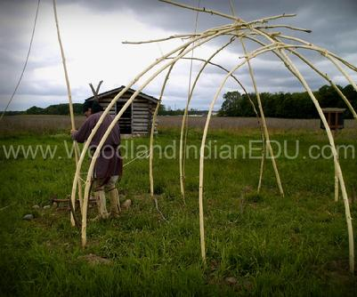 Placing poles in the ground to make the wigwam frame